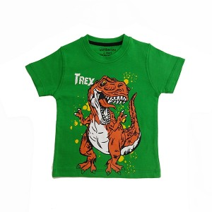Boys T-Shirt H/L Trex Green